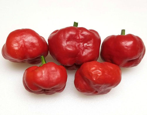 Hot Apple Pepper